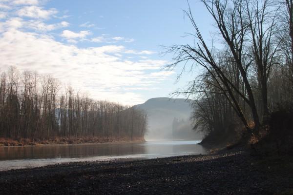 Protecting Vital Farmland Near the Snohomish River