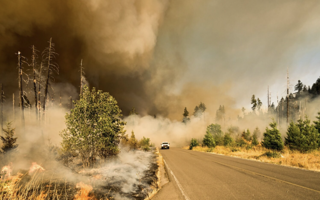 Weighing the Benefits and Cost of Managing Forested Watersheds to Reduce Wildfire Risk