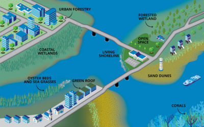 Rethinking Infrastructure to Include Natural Spaces
