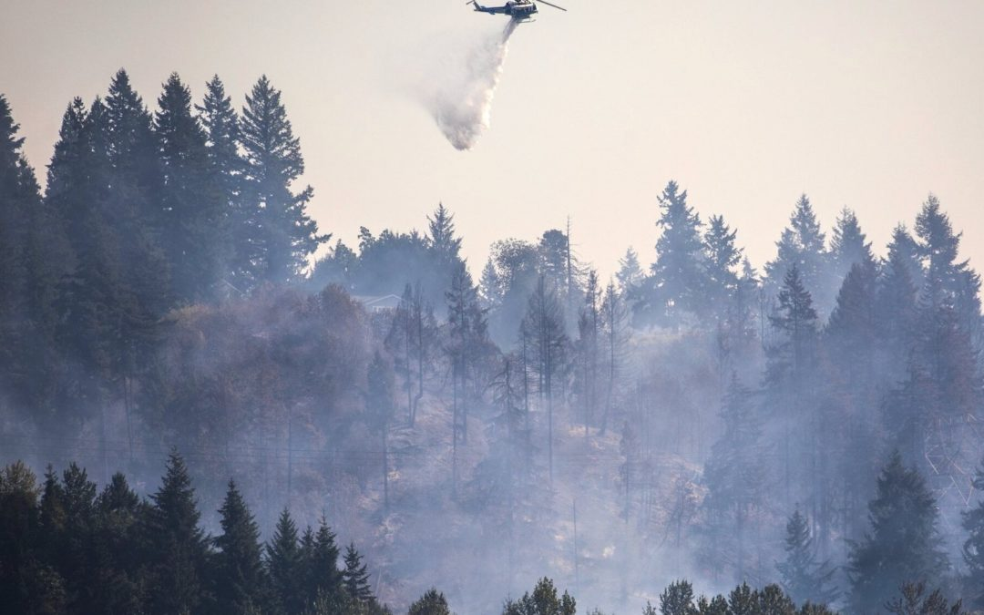 Western Wildfires: Indigenous Knowledge, Watershed Impacts, and Moving Toward a Resilient, Climate-Ready Land Management System