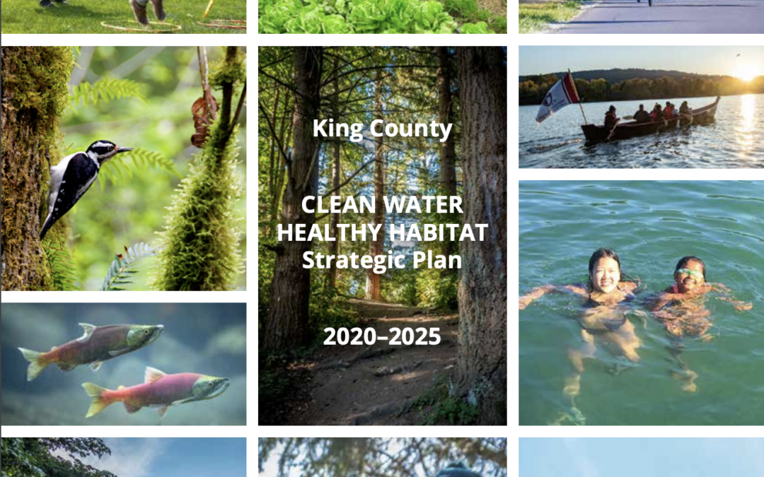 Diving Into King County's $9B Clean Water Healthy Habitat Initiative